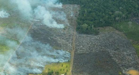Itamaraty aceita ajuda de 10 milhões de libras do Reino Unido para a Amazônia
