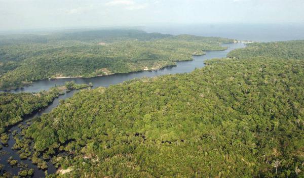 Governo publica novo decreto sobre área na Amazônia, mas mantém extinção de reserva