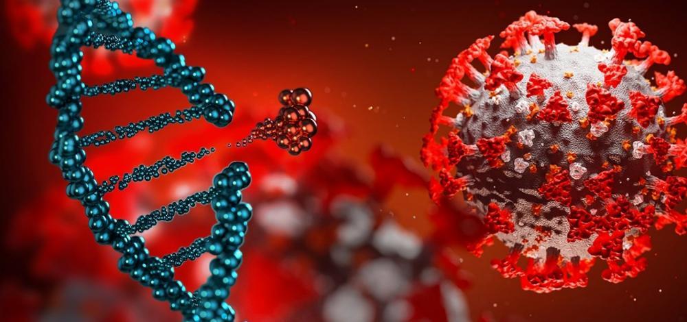 Coronavírus: estudo da Fiocruz mostra eficácia de antiviral usado contra hepatite C
